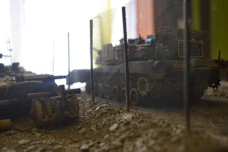 M1 mine rollers et M1 mine plows (dragon et trumpeter 1/35) Dsc_0075