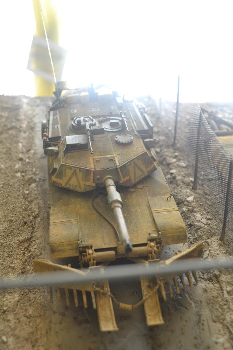 M1 mine rollers et M1 mine plows (dragon et trumpeter 1/35) Dsc_0078