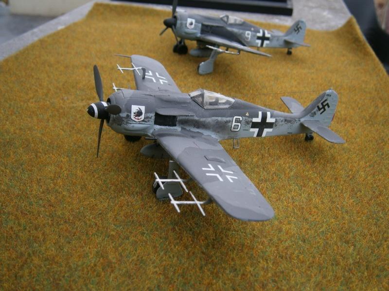 [Revell] FW 190 A Chasseur de nuit Pb010019