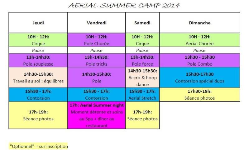 [ESSONNE] AERIAL SUMMER CAMP à l'Aerial Dance Academy - Juillet et Aout 2014. 14560611