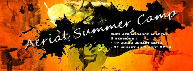 [ESSONNE] AERIAL SUMMER CAMP à l'Aerial Dance Academy - Juillet et Aout 2014. 17956510