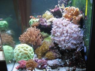 mon cube d'eau de mer 02011