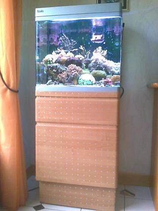 mon cube d'eau de mer Photo017