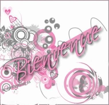 Presentation .  Bienve11