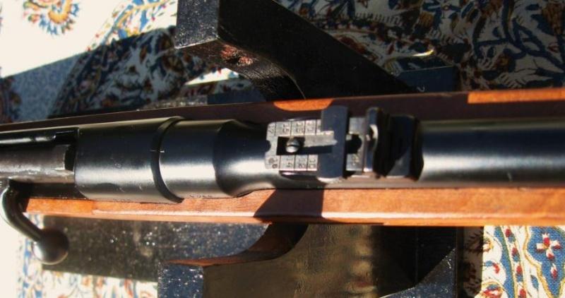 Carabine 22lr Steyr 1898.  Steyr410
