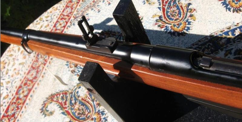 Carabine 22lr Steyr 1898.  Steyr810