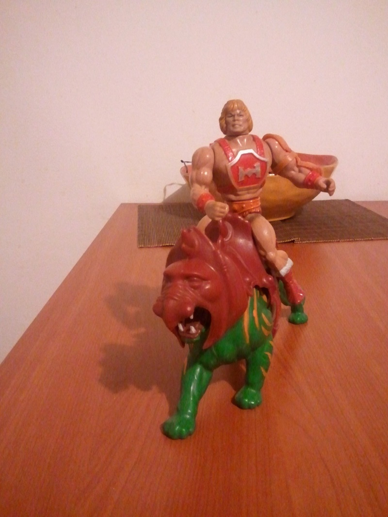 HE-MAN Thunder Punch + Battlecat completa Wp_00429