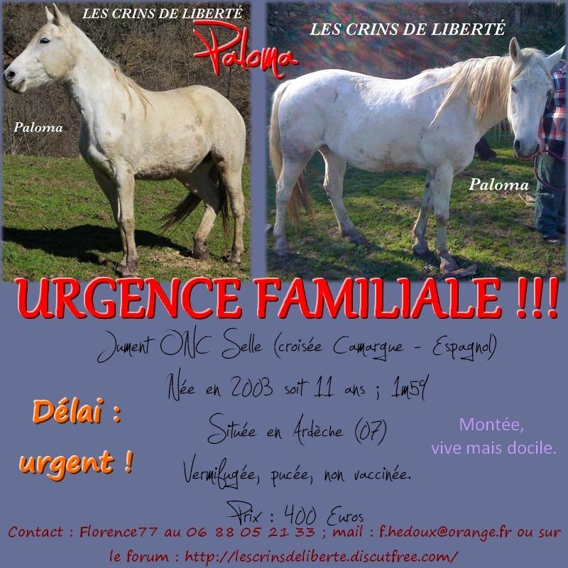 (Dept 07) PALOMA, Onc Selle, Sauvée par Loulou (Mai 2014) décédé - Page 3 Paloma10