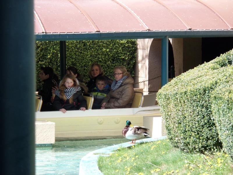fabuleux séjour du 23 au 25 mars 2014 à Disneyland Paris  Disney28