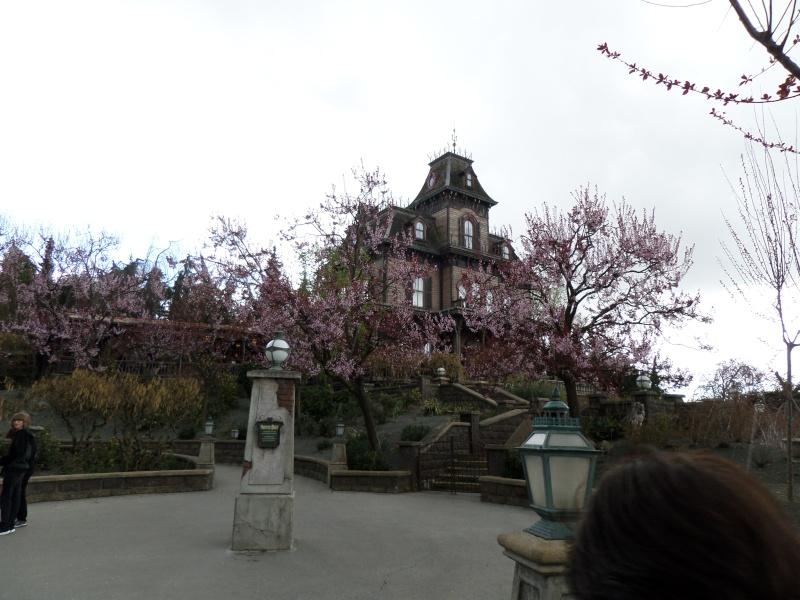 fabuleux séjour du 23 au 25 mars 2014 à Disneyland Paris  Disney42