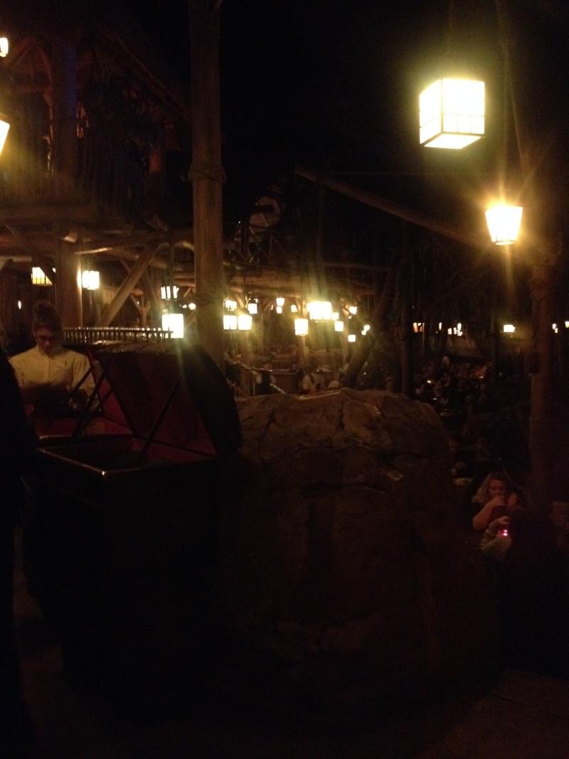 fabuleux séjour du 23 au 25 mars 2014 à Disneyland Paris  Img_1241