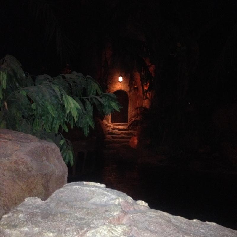 fabuleux séjour du 23 au 25 mars 2014 à Disneyland Paris  Img_1244