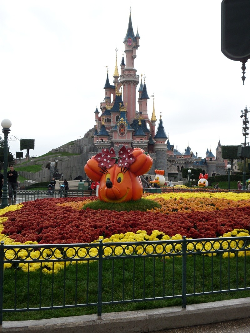 sejour anniversaire et castle club du 25/10 au 28/10/13 Sam_0112