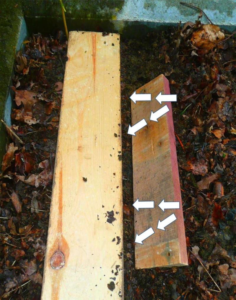 Semer dans le mulch 612