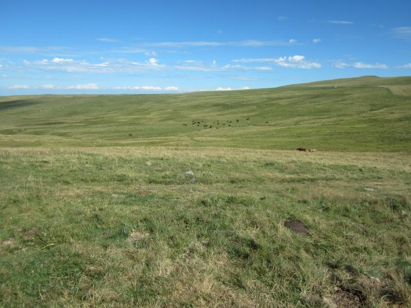 Plateau du Limon : chemin des Quiroux Fabie190