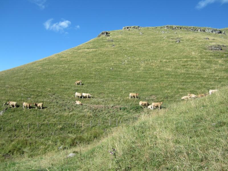 Plateau du Limon : chemin des Quiroux Fabie196