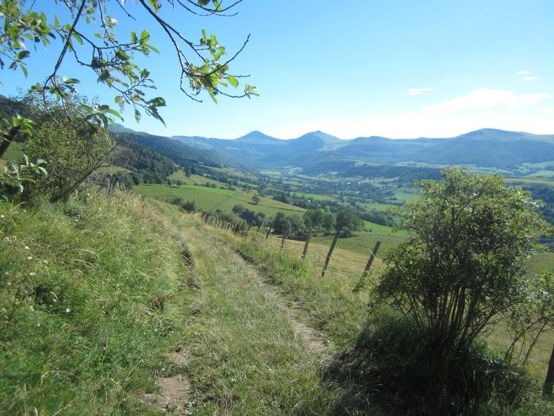 Plateau du Limon : chemin des Quiroux Fabie197