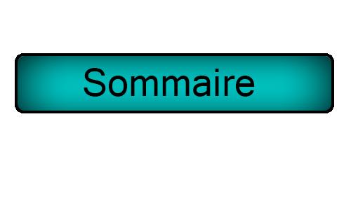 Recrutement Sommai10