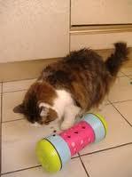 Psychologie d'Itchy - Un chat ou pas ? Untitl13