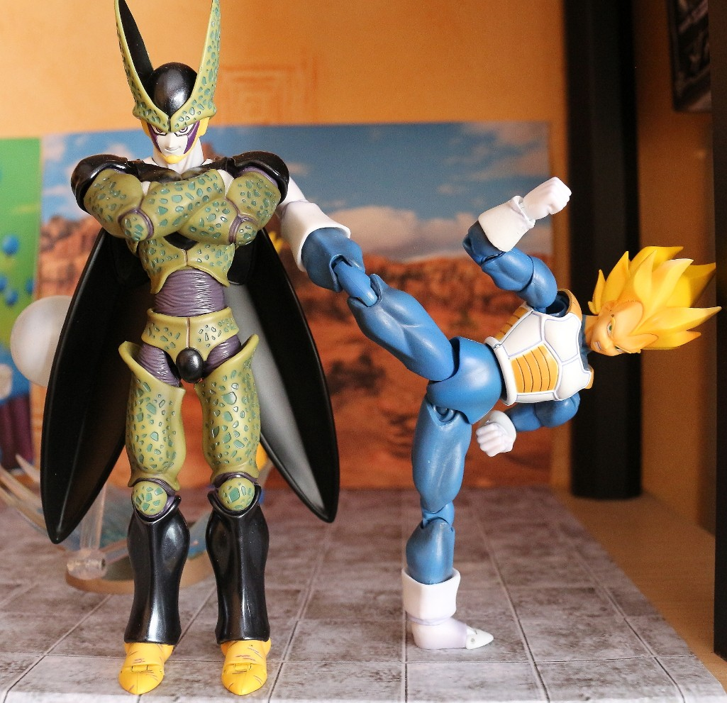 Another ...collection! (of Kheltal) Vegeta11