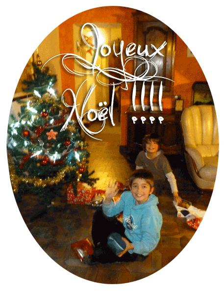 poulailler - Joyeuses fêtes au Poulailler - Page 2 Noel10