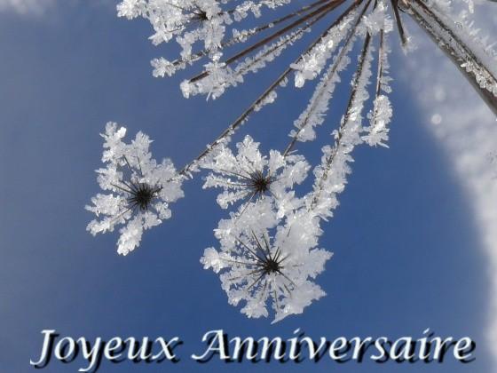 Bon anniversaire Astrophile ! 1002ff10