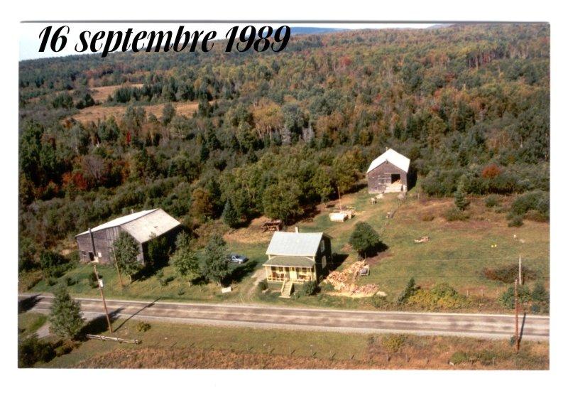Bernache du Canada surprise  1989-s10