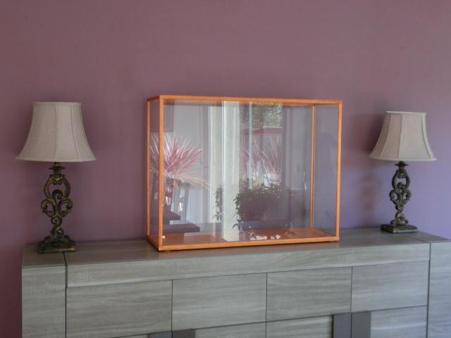 vitrine - Une vitrine pour moins de 100 € Cimg0413