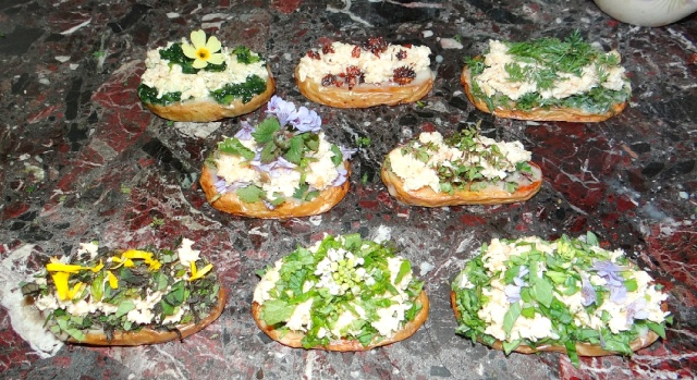 TARTINES SAUVAGES ET GOURMANDES 2014-033