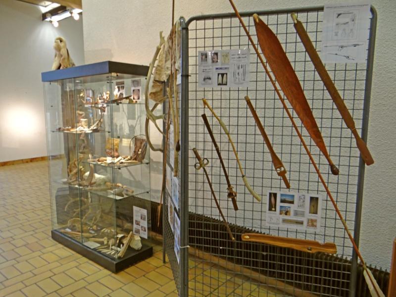 Expo de Préhistoire à l'Hôtel de VIlle de Woippy (Moselle), du 4 novembre au 4 décembre Dsc01115