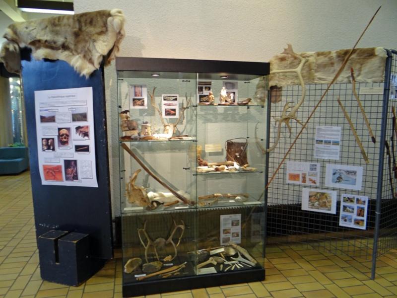 Expo de Préhistoire à l'Hôtel de VIlle de Woippy (Moselle), du 4 novembre au 4 décembre Dsc01123