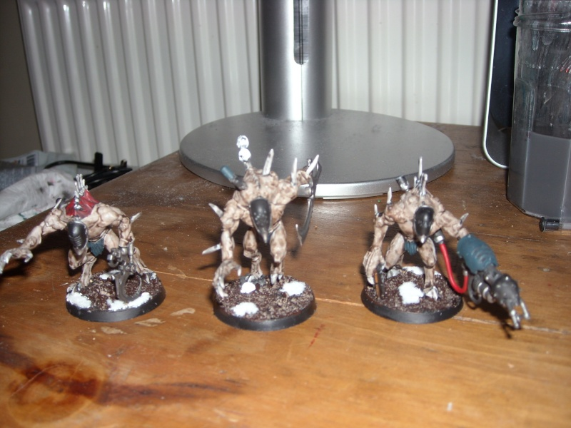 Coven Conversions! Grotes10