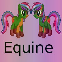 Links and Useful Info for Welcomers & Helpers Equine10