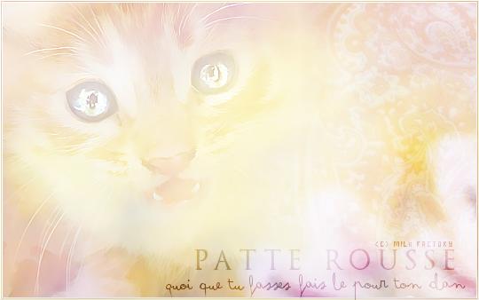 Spirit ♥ Patte_12