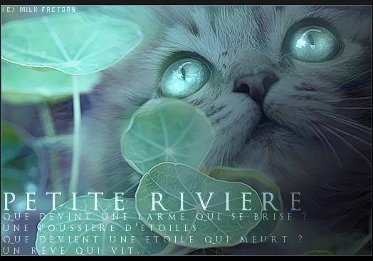 Voir un profil - Nuage des Rivières Petite13