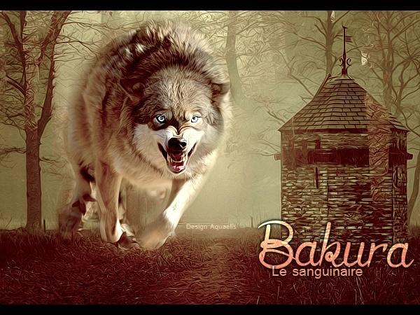 Vidéo Officielle de Legends Of Wolves Bakura14