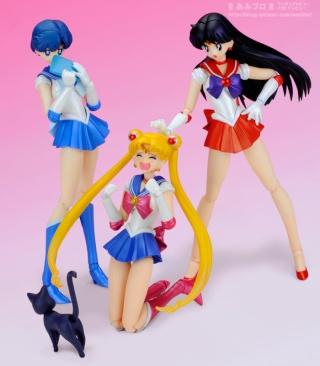 Sailor Moon (20th anniversary) 1110