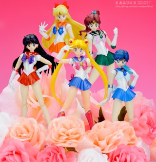 Sailor Moon (20th anniversary) 1411