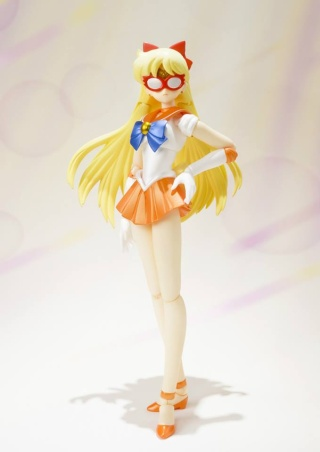 Sailor Moon (20th anniversary) 14652710