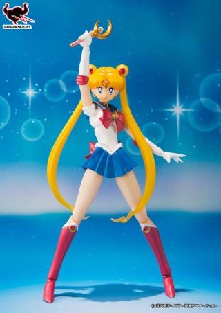 Sailor Moon (20th anniversary) 27894510