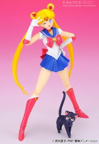 Sailor Moon (20th anniversary) 49688710
