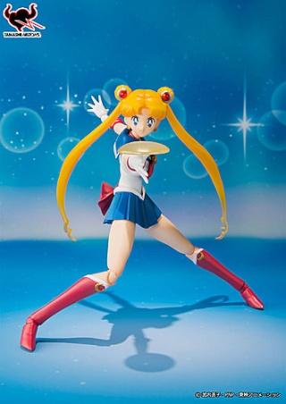 Sailor Moon (20th anniversary) 73661010