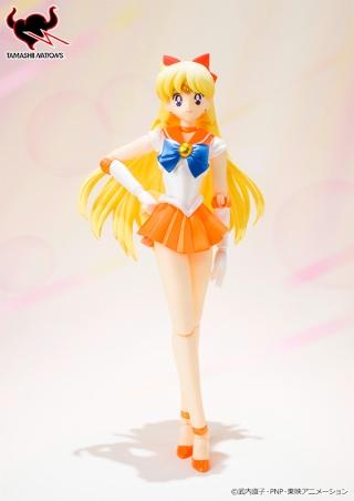 Sailor Moon (20th anniversary) 8aaae010