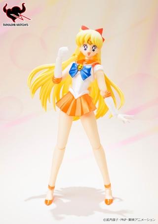 Sailor Moon (20th anniversary) Fe829310