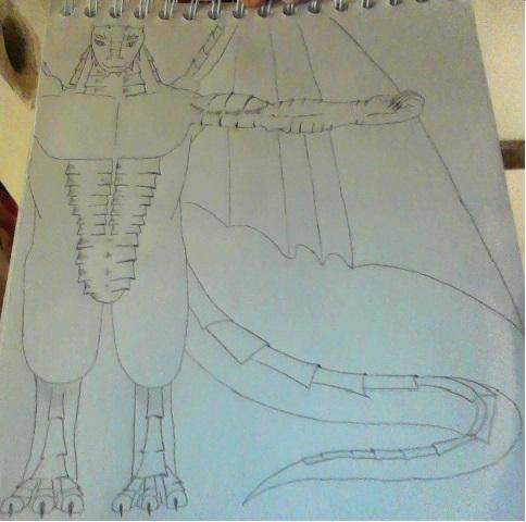 Ma galerie (niveau amateur) - Page 4 Draak10