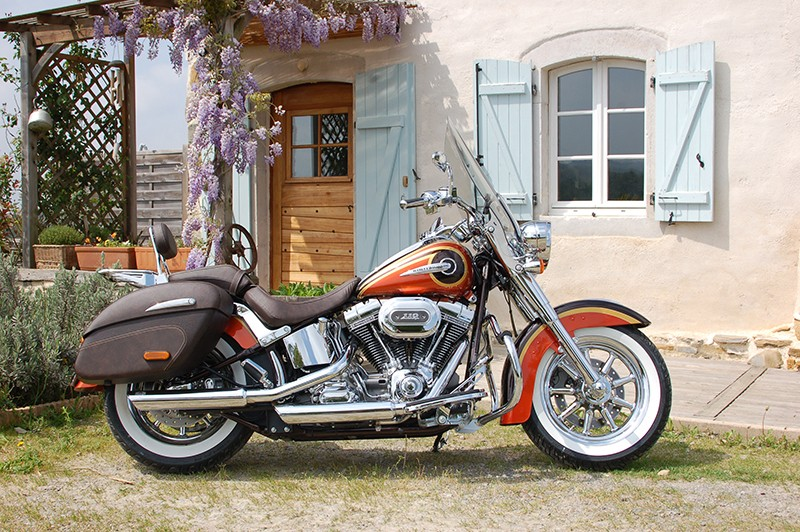 CVO Softail Deluxe 2014 Candy Cobalt: the Blue Diamond Dsc_8010