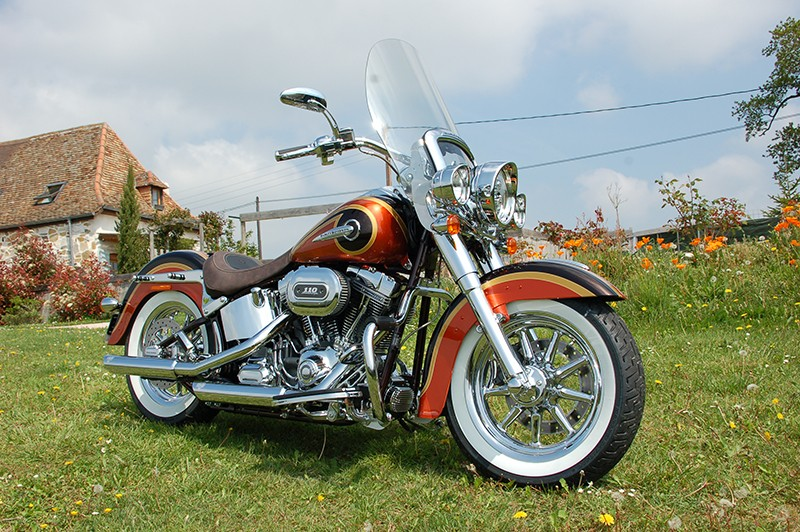 CVO Softail Deluxe 2014 Candy Cobalt: the Blue Diamond Dsc_8011