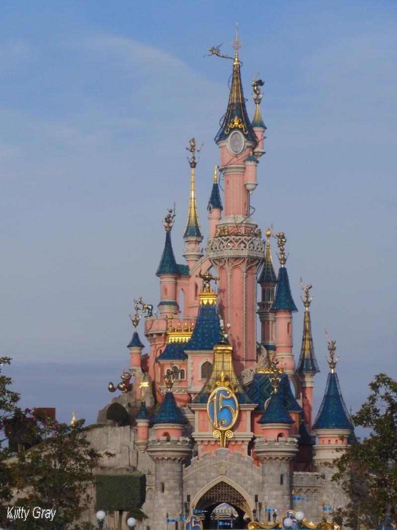 Le château en photos  Disney29