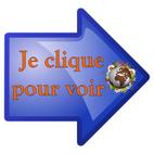 Salon de la BD de Saint Gaudens (31) 17 et 18 mai 2014 Jecliq11