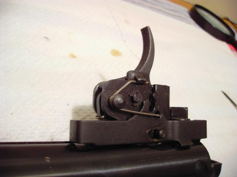 stoeger X10 démontage de la détente HELP Pict3327